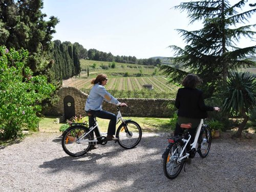 Route through vineyards on an electric bike
